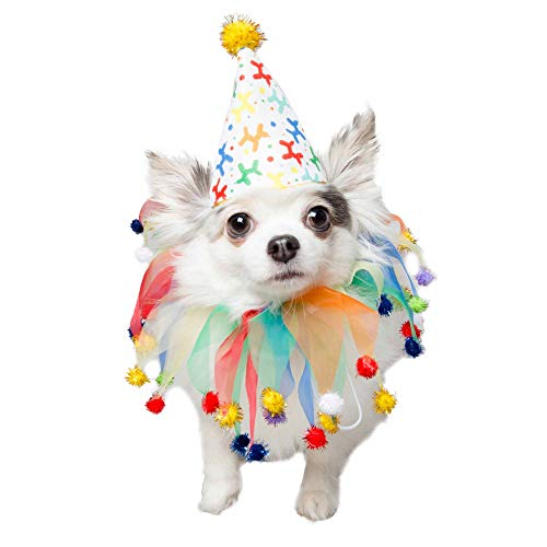 PET KREWE UNLEASH THE PARADE Birthday Dog Collar & Hat   Pet Costume for Dogs 1st Birthday, National Cat Day & Celebrations   Birthday Outfit for Small, Medium, Large & XL Cats & Dogs