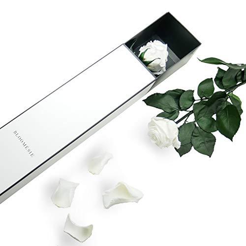 BLOOMÉSIE Duftende Langstiel Rose Weiß, 1 Infinity Long Stem Rose, Ewige Rose mit Stiel Als Geschenk Für Frauen, Zimmer Deko Wohnzimmer Blumen, Haltbare Rose, Konservierte Rose mit Geschenk Box