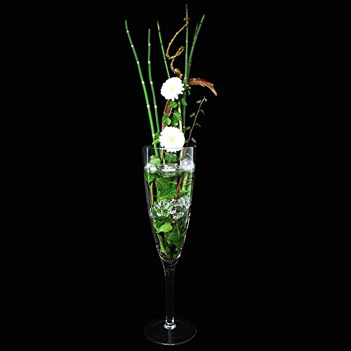 Murdock verre coupe large glaskönig ® hauteur : 55 cm ø 14 cm décoratif verres à champagne