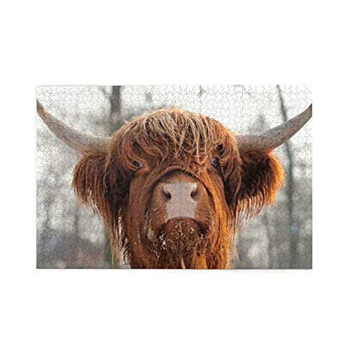 Jigsaw Puzzles For Seniors Cow Fold Hair Snow Face Nose Horned Closeup Pasture Scottish Cattle Nature Bull Highlander Rural 1000 Piece Wooden Easy Puzzle for Adults