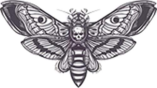 Divine Designs Creepy Black and White Moth with Skull Vinyl Decal Sticker 4 Wide