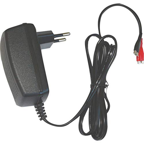 DSK 6876 BC-6500 - Cargador de 6v para batería Plomo automático, Negro
