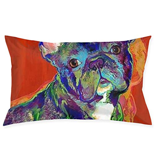 HDDCOMG French Bulldog Throw Pillow Cover Rectangle Decorative Cushion Bed Couch Sofa 20x30 Inch