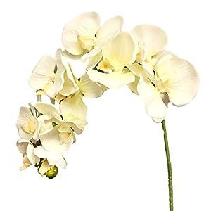 Silk Flower Garden 2 Pcs Artificial Butterfly Orchid Spray 38″, Cream