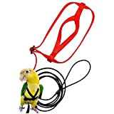 Bird Harness, Leash Bird, Harness and Parrot Leash Supplies, Bird Nylon Rope, Adjustable Training Design Anti-Bite, Suitable for Parrot Birds … (red)