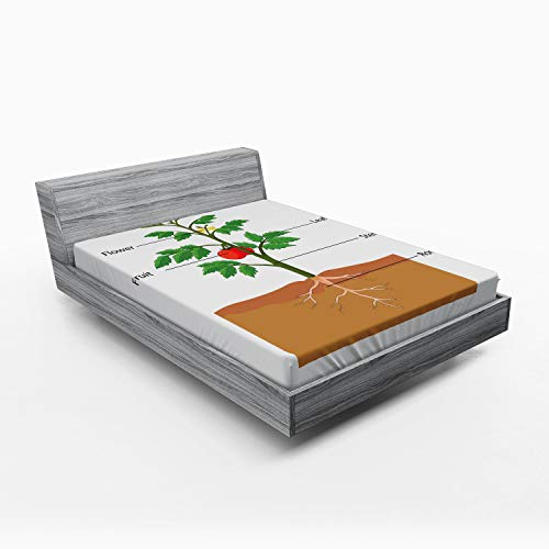 ABAKUHAUS Biologie Hoeslaken, Delen van een tomatenplant, Zachte Decoratieve Stof Beddengoed, Elastische Band Rondom, 150x 190 cm, Veelkleurig