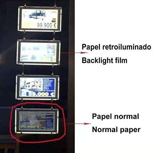 WORLED-Backlight paper/Papel Retroiluminado/Papel Backlite 125G Formato A4 100 hojas para CARPETAS LED/Folder LED/Affiches LED para impresión en LASER o INKJET