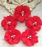 Hava Kolari 20 Stück Chiffon Blumen mit Strass und...