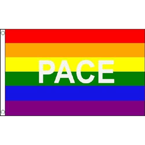 Arc-en-ciel Gay Pride Pace 5 'x3' Drapeau