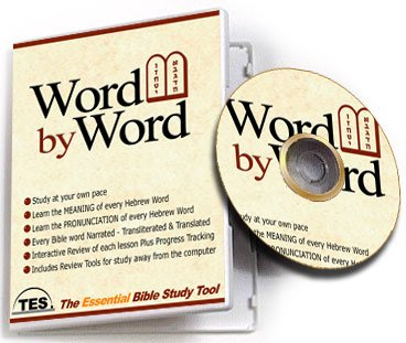 Word By Word Book Of Chronicles 2 - The Essential Bible Study Book Tool