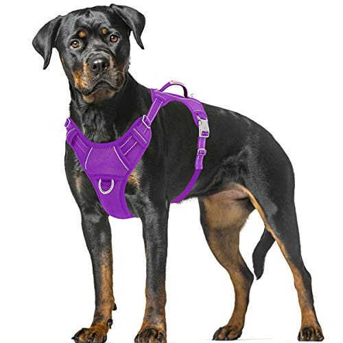 BARKBAY No Pull Dog Harness Large Step in Reflective Dog Harness with Front Clip and Easy Control Handle for Walking Training Running with ID tag Pocket(Purple,XL)