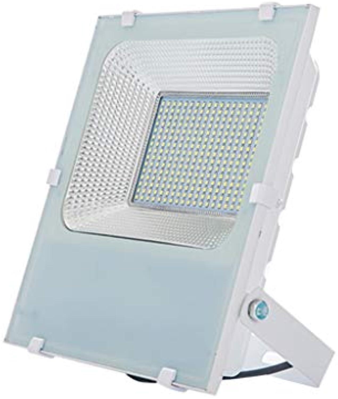 YROD LIGHT LED Flutlicht, Draussen Gartenlicht Wasserdicht Projektionswandleuchte Arbeit Sicherheit Super Hell (Farbe   Weies Licht-100W)