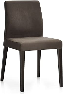 Aprodz Solid Wood Cannes Dining Chairs for Living Room
