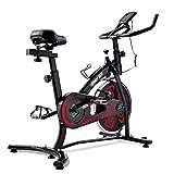T-Day Bicicleta Estáticas Bicicleta De Fitness con Consola LCD Ejercicio Bicicleta Ajustable Asiento Y Manillar Bicicleta Interior