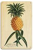 Pacifica Island Art Hospitalidad - Piña Hawaiana - Platos de Libro Selecciones de Plantas - Ilustración botánica de Georg Dionysius Ehret c.1742 - Letrero de Madera 20x30cm