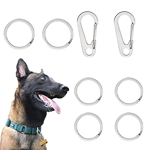 Wallwow Dog Tag Clips 304 Stainless Steel Pet ID Tag Holder for Dog Cat Collars and Harnesses(8pcs)