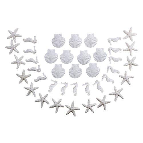 LJY 40 piezas mini 3 cm resina blanca lápiz dedo estrella de mar y conchas marinas conjunto para boda decoración del hogar y proyectos de manualidades