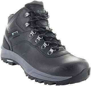Men's Altitude VI I Waterproof Hiking Boot
