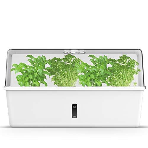 Munroomy Mini Gewächshaus als Anzucht Set | ideal zur Anzucht von Kräutern & Pflanzen | Indoor Kräutergarten für die Fensterbank | Zimmergewächshaus mit Selbstbewässerungssystem