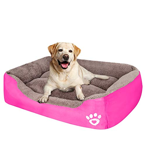Girl Dog Bed For Large Dogs