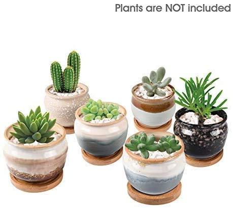 KENTING KORAM Maceta suculenta de cerámica de 3,5 Pulgadas, macetas con macetas para Cactus con Orificios, contenedor de Esmalte Que Fluye para jardín, Cactus, Maceta suculenta Paquete de 6
