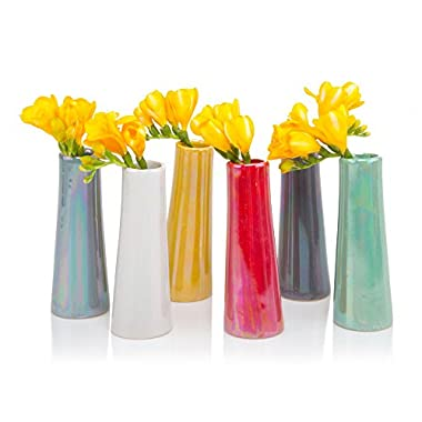 Chive - Galaxy, Small Cylinder Ceramic Bud Flower Vase, Unique Single Flower Decorative Floral Vase for Home Decor, Bulk Set of 6 - Assortment Yellow, Green, Red, Blue, White
