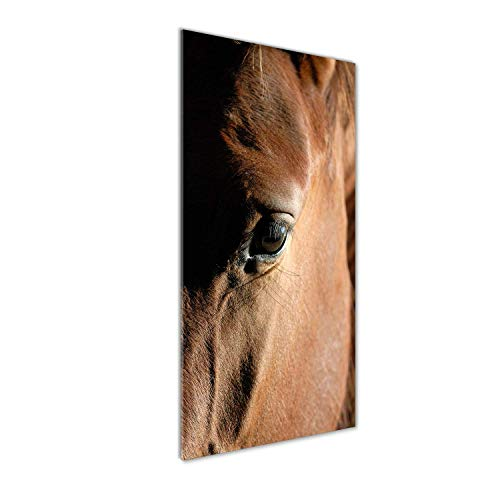 Tulup Impresión en Vidrio - 50x125cm - Cuadro sobre Vidrio - Pinturas en Vidrio - Cuadro en Vidrio - Impresiones sobre Vidrio - Cuadro de Cristal - Animales - Marrón - Caballo