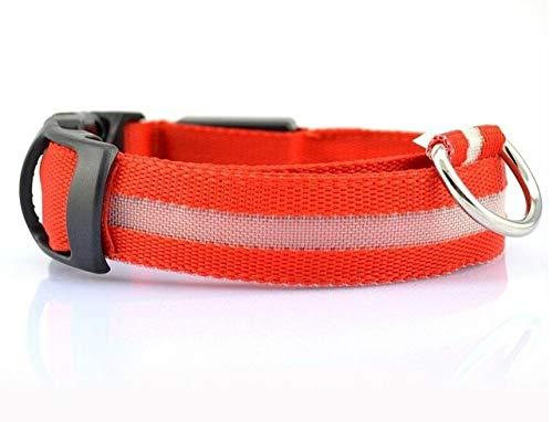 KDSFXG Led Pet Nylon Collar para Perros Seguridad Nocturna Parpadeo Brillo en la Oscuridad Correa para Perros Perros Collares Fluorescentes Luminosos Collar, Rojo, L