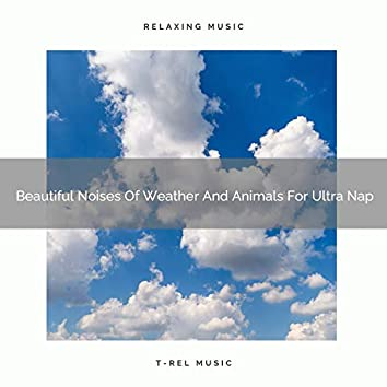 Beautiful Noises Of Weather And Animals For Ultra Nap