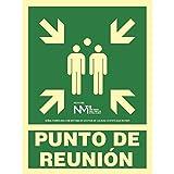 NM RD14106 - Señal Luminiscente Punto De Reunion Clase B PVC 0,7mm 22,4x30cm con CTE, RIPCI y Apto para la Nueva Legislación