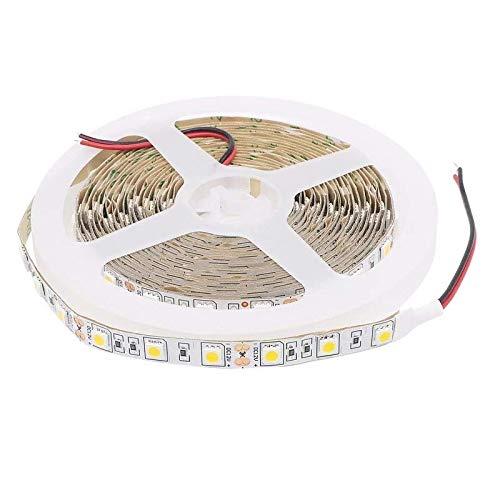 TID LED - Oferta 20M 4 Tiras LED SMD 5050 12V 6000K Blanco Frío IP20 300LED 4 * 5 metros/rollo