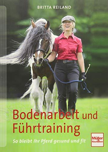 Bodenarbeit und Führtraining: So bleibt Ihr Pferd gesund und fit