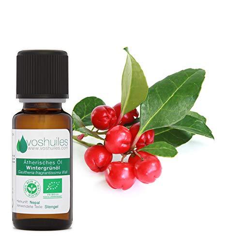Ätherisches Öl - Ätherisches Bio-Wintergrünöl - 10ml