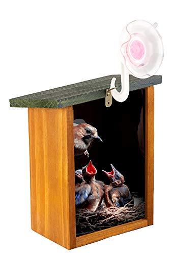 Royal Gardineer Vogelkasten: Fenster-Nistkasten aus Echtholz, mit starkem Saugnapf und Sichtfenster (Vogelnistkästen)