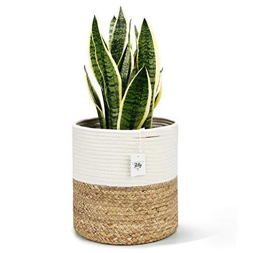 POTEY 700102 Cotton Rope Woven Plant Basket with Water Hyacinth - Modern Indoor Large Pot Basket for Plants Up to 10 Inch Planter Woven Storage Organizer with Handles Home Decor,12' x 12'