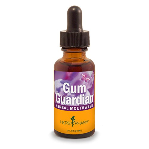 Herb Pharm Gum Guardian Herbal Mouthwash for Healthy Mouth and Gums,...
