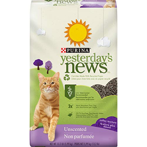 best cat litter for kittens training to use the box