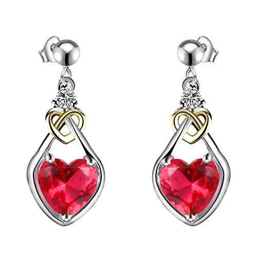 Urns Ashes Funeral Faux Ruby Earrings, Dual Color Heart Shape Pendant Women Ear Studs Earrings Jewelry Banquet Dating Gift,Colour Name:Rose Red Pet Memorial Dog cat Urn (Color : Rose Red)