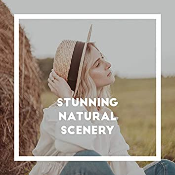 Stunning Natural Scenery – 1 Hour of Beautiful Nature Sounds for Relaxation, Meditation, Study, Sleep