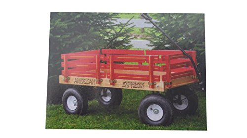 Why Should You Buy American Express Heavy Duty Pull Along Wagon, 500LB Weight Capacity, 20x40 Red,