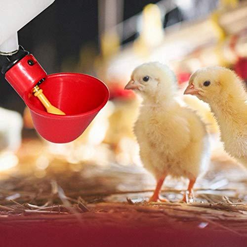 Bebedero para Aves De Corral, 10 Piezas Alimento Agua Automática Aves Beber Tazas Aves Coop Pollo Fowl Bebedero para Gallina De Pollo Ganado