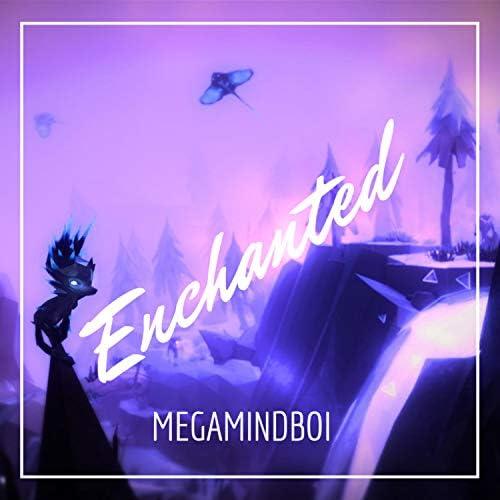 Megamindboi