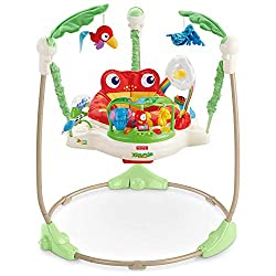 Fisher-Price Rainforest Jumperoo- Best baby jumper