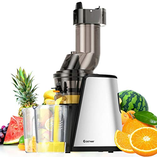 150W, Healthy Best Taste, Easy To Operate, Preserves More Vitamins, Enzymes, Slow Stainless Steel Wide Chute Masticating Juicer Cold Press Extractor, Quiet, Compact Size, 2 Outlets For Juice