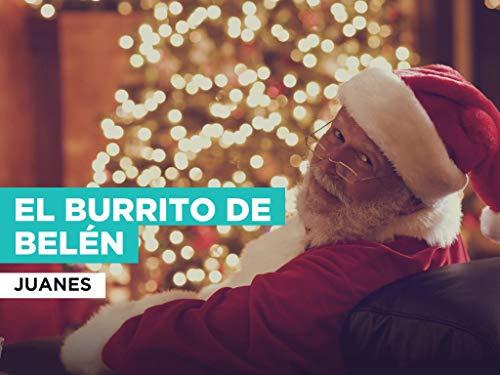 El Burrito de Belén al estilo de Juanes