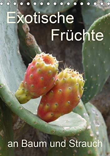 Exotische Früchte an Baum und Strauch (Tischkalender 2021 DIN A5 hoch)