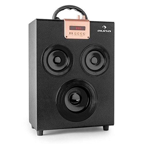 auna Central Park - Bluetooth 2.1-Lautsprecher Box, UKW-Radio, automatischer Sendersuchlauf, USB/SD, LED-Display, AUX, Akku, USB-Ladekabel, Fernbedienung, Tragegriff, schwarz