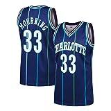 Jerseys para hombre 33 # Alonzo Mourning Charlotte Hornets Jersey vintage, Ropa deportiva, Malla unisex Malla bordada Baloncesto Swingman Jersey Tops para niños / adultos o un regalo de cumpleaños (