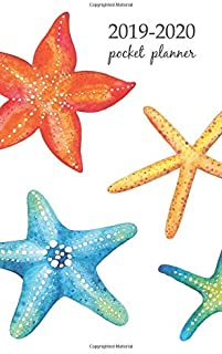 2019-2020 Pocket Planner: 2 Year Pocket Monthly Calenda Planner  Schedule Organizer Appointment Journal Notebook 4 x 6.5 inch And Collection of starfish watercolor, vector illustration.