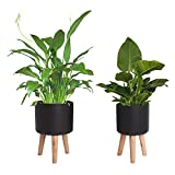 Set of 2 Modern Metal Planter with Wood Stand,Mid Century Floor Standing Plant Pots,Large&Small Flower Pot for Indoor Outdoor Planters,Matte Black